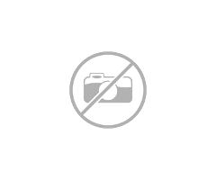 Картинг Соди с мотор Хонда 390 куб-см